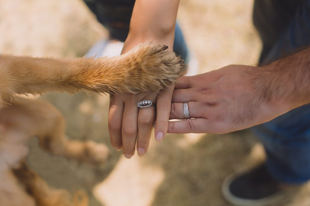 two-person-with-rings-on-ring-fingers- and dog, all putting hands/paw together
